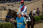 DEL MAR, CA  AUGUST 29: #2 Medina Spirit ridden by John Velasquez in the post parade of the  Shared Belief Stakes on August 29, 2021 at Del Mar Thoroughbred Club in Del Mar, CA. (Photo by Casey Phillips/Eclipse Sportswire/CSM)