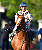 Morning with California Chrome - 05/31/2014