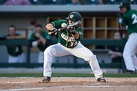 Luke Gibbs (12) of the Charlotte 49ers attempts to lay down a bunt against the North Carolina State Wolfpack at BB&T Ballpark on March 31, 2015 in Charlotte, North Carolina.  The Wolfpack defeated the 49ers 10-6.  (Brian Westerholt/Four Seam Images)