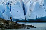 Hiker, Grey Glacier, Torres del Paine National Park, Chile