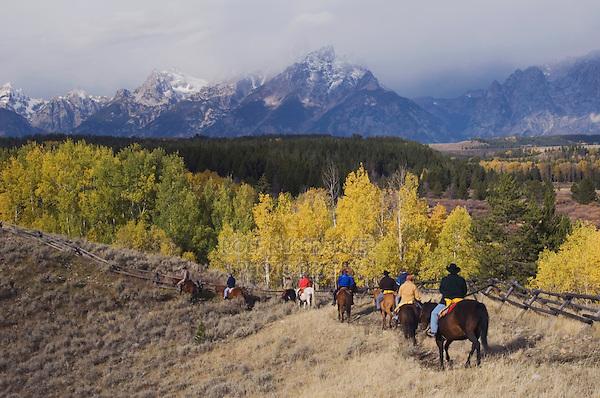 Tourists enjoying Horseback Riding, Grand Teton NP,Wyoming, USA