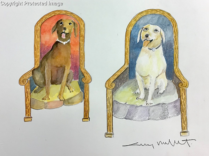 Example Pets Watercolor<br />
