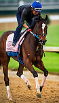 April 30, 2014: Untapable gallops in preparation for the Kentucky Oaks at Churchill Downs in Louisville Ky. Alex Evers/ESW/CSM