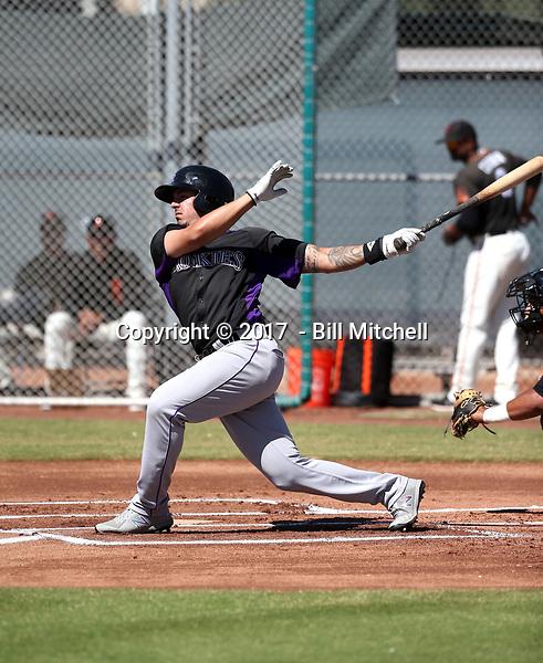 Colton Welker - 2017 AIL Rockies (Bill Mitchell)