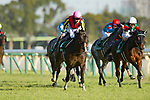 FUCHU,JAPAN-FEBRUARY 17: Fame Game #14,ridden by Christophe Lemaire,wins the Diamond Stakes at Tokyo Racecourse on February 17,2018 in Fuchu,Tokyo,Japan (Photo by Kaz Ishida/Eclipse Sportswire/Getty Images)