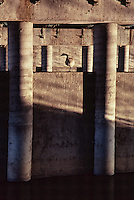 Fine art landscape of Canada goose resting on one leg, looking sideways to his left, protected by the underlying infrastructure of a freeway overpass, supported by vertical cement pillars, cross-lit with diagonal morning light, casting a sepia tone across the image and half light on the vertical pillars and goose.