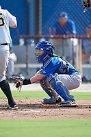Toronto Blue Jays catcher Reilly Johnson (7) during an Instructional League game against the Pittsburgh Pirates on October 14, 2017 at the Englebert Complex in Dunedin, Florida.  (Mike Janes/Four Seam Images)