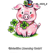 NY, paintings+++++,KL4610/2,#ny#, EVERYDAY ,sticker,stickers, new year's eve ,pig,pigs