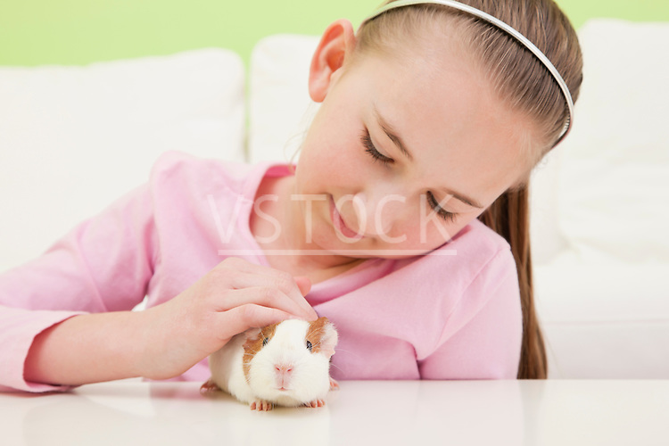 USA, Illinois, Metamora, Portrait of girl (10-11) with guinea pig