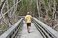 Park visitor hiking in Everglades National Park, Florida. M