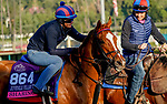 October 28, 2019 : Breeders' Cup Juvenile Fillies Turf entrant Sharing, trained by H. Graham Motion, exercises in preparation for the Breeders' Cup World Championships at Santa Anita Park in Arcadia, California on October 28, 2019. John Voorhees/Eclipse Sportswire/Breeders' Cup/CSM