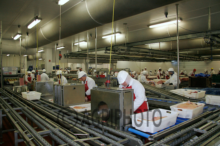 Butchery lines in a slaughterhouse