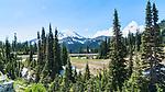 Mt. Rainier seen from Tipsoo Lakes, Chinook Pass, Highway 410, Cascade Mountains, Mt. Rainier National Park, Washington