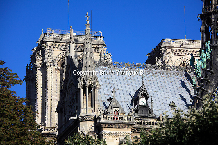 A closed up view of Notre Dame cathedral. city of Paris. Paris. France