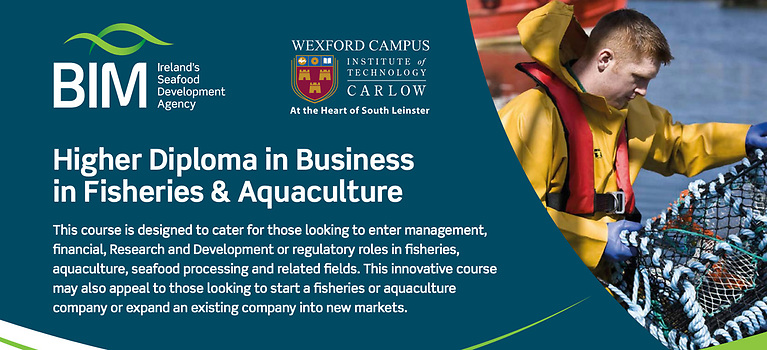 BIM's higher diploma in business in fisheries and aquaculture