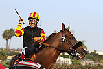"""Centralinteligence with Victor Espinoza aboard wins the G1 Breeder's Cup """"Win and You're In"""" Triple Bend Handicap at Betfair Hollywood Park in Inglewood, California on June 29,2013. (Zoe Metz/ Eclipse Sportswire)"""