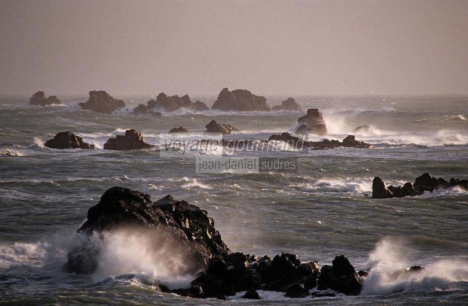 Europe/France/Bretagne/22/Côtes d'Armor/Circuit de la Côte des Ajoncs/Plougrescant: L'océan aux environs de Pors-Hir