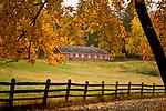 Rockefeller Preserve In Autumn