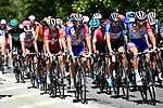 The peloton climb Montee de Bisanne during Stage 4 of Criterium du Dauphine 2020, running 157km from Ugine to Megeve, France. 15th August 2020.<br /> Picture: ASO/Alex Broadway | Cyclefile<br /> All photos usage must carry mandatory copyright credit (© Cyclefile | ASO/Alex Broadway)