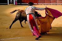 A Spanish bullfighter performs at the bullring in Torremolinos, Spain, 24 July 2006.