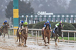 February 27, 2021:  Kimari #9, ridden by Joel Rosario, win the Spring Fever Stakes at Oaklawn Park in Hot Springs, Arkansas. Ted McClenning/Eclipse Sportswire/CSM