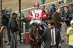 """September 26 2015: Big Blue Kitten with Joe Bravo win the Grade I Joe Hirsch Turf Classic, a """"Win & You're In"""" for 3-year olds & up, going 6  furlongs at Belmont Park.  Trainer Chad Brown. Owner Kenneth & Sarah  Ramsey. Sue Kawczynski/ESW/CSM"""