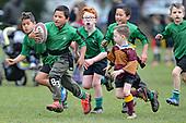 Junior Rugby at Tahuna