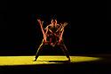 Ballet Icons Gala 2020, London Coliseum
