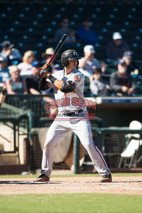 Glendale Desert Dogs catcher Martin Cervenka (25), of the Baltimore Orioles organization, at bat during an Arizona Fall League game against the Surprise Saguaros at Surprise Stadium on November 13, 2018 in Surprise, Arizona. Surprise defeated Glendale 9-2. (Zachary Lucy/Four Seam Images)
