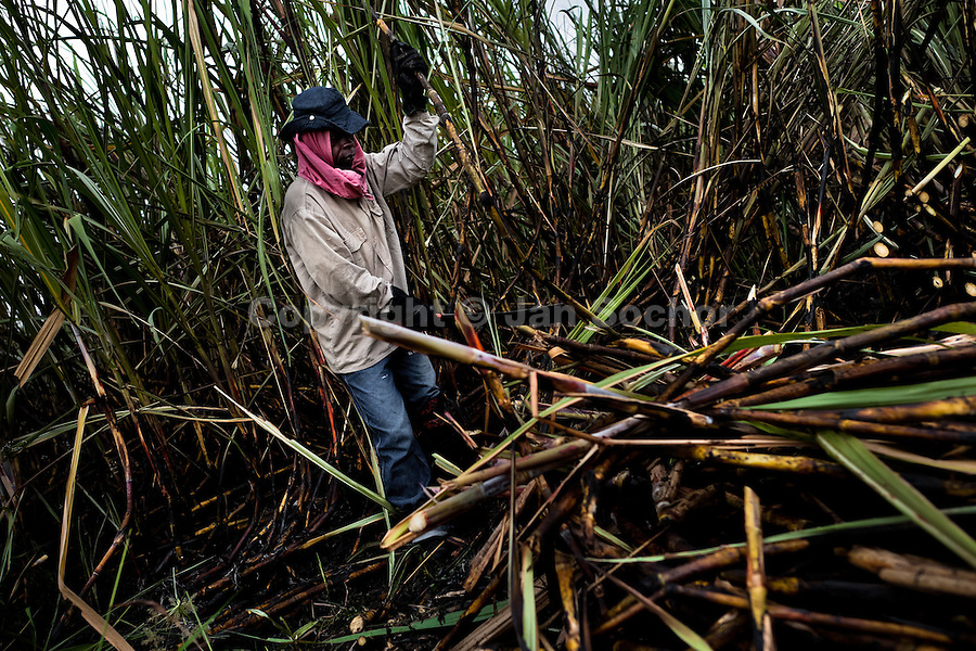A sugar cane cutter works on a plantation near Florida, Valle del Cauca, Colombia, 25 May 2012. The Cauca River valley is the booming centre of agriculture and sugar cane cultivation in Colombia. Although the main part of the crop is still refined into a sugar, the global demand of biofuel and ethanol has intensified the sugar cane production in the last years. 85 percent of Colombia's cane crop is still harvested the manual way, employing approximately 30,000 workers. Working six days a week, under harsch labor conditions, the sugar cane cutters earn $4 for every ton of cane they cut, with no access to social benefits due to the tricky system of intermediary contractors and cooperatives.