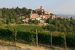 Italien, Piemont, Calamandrana Alta: Weinanbau | Italy, Piedmont, Calamandrana Alta: wine growing
