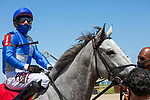 March 27, 2021: Gray's Fable #1, ridden by jockey Junior Alvarado goes gate-to-wire to win the Kitten's Joy Appleton Stakes (Grade 3) on Florida Derby Day at Gulfstream Park in Hallandale Beach, Florida. Liz Lamont/Eclipse Sportswire/CSM