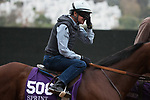 DEL MAR, CA - OCTOBER 31: Roy H, owned by Rockingham Ranch and trained by Peter Miller, jockey Kent Desormeaux fixes his glasses during morning workouts at Del Mar Thoroughbred Club on October 31, 2017 in Del Mar, California. (Photo by Jon Durr/Eclipse Sportswire/Breeders Cup)