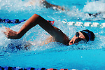 NELSON, NEW ZEALAND - JANUARY 31:<br />