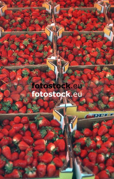 fresh strawberries displayed at a farmer's market<br /> <br /> fresas frescas en el mercado<br /> <br /> frische Erbeeren auf dem Wochenmarkt<br /> <br /> 3597 x 2295 px<br /> Original: 35 mm slide transparency