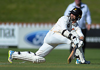 Wellington's Devon Conway bats during day one of the Plunket Shield cricket match between the Wellington Firebirds and Canterbury at Basin Reserve in Wellington, New Zealand on Tuesday, 29 October 2019. Photo: Dave Lintott / lintottphoto.co.nz