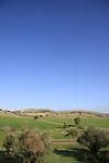Israel, Shephelah, scenery by Moshav Amatzia