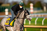 November 1, 2020: Tacitus, trained by trainer William I. Mott, exercises in preparation for the Breeders' Cup Classic at  Keeneland Racetrack in Lexington, Kentucky on November 1, 2020. Alex Evers/Eclipse Sportswire/Breeders Cup /CSM
