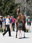 April 23, 2014: Foxwood High and Selena O'Hanlon during the first horse inspection at the Rolex Three Day Event in Lexington, KY at the Kentucky Horse Park.  Candice Chavez/ESW/CSM