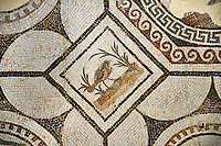 Picture of a Roman mosaics design depicting  a bird charmed by  music being played by Orpheus, from the ancient Roman city of Thysdrus, Bir Zid area. 2nd century AD. El Djem Archaeological Museum, El Djem, Tunisia.