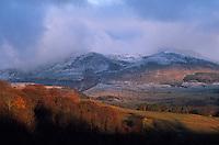 Europe/France/Auvergne/63/Puy-de-Dôme/Parc Régional des Volcans/Les Monts Dores: Le massif aux environs de Besse au début de l'Automne