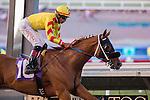AUG 29,2014:Red Outlaw,ridden by Edwin amldonado,wins the El Cajon Stakes at Del Mar in Del Mar,CA. Kazushi Ishida/ESW/CSM