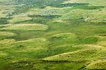 Recovering moorland after burn, Scottish Highlands, Cairngorms National Park, Scotland, United Kingdom