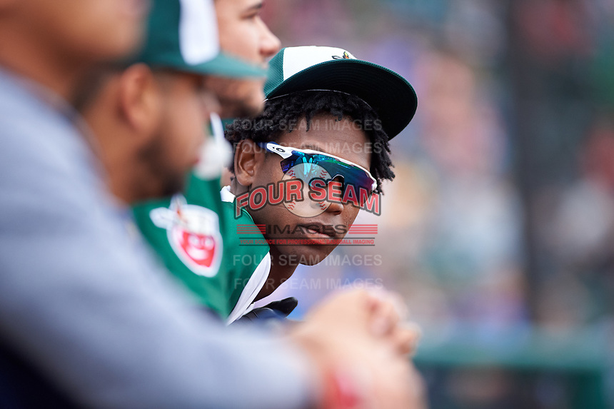 Fort Wayne TinCaps pitcher Henry Henry (17) during a Midwest League game against the Kane County Cougars at Parkview Field on May 1, 2019 in Fort Wayne, Indiana. Fort Wayne defeated Kane County 10-4. (Zachary Lucy/Four Seam Images)