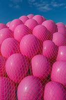 France, Pas-de-Calais (62), Côte d'Opale, Berck : lacher de ballons sur la  plage//  France, Pas de Calais, Cote d'Opale (Opal Coast), Berck: let go of balloons on the beach