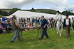 Widecombe Fair Widecombe in the Moor Dartmoor Devon Uk. Tables with siler cups. Uncle Tom Cobley.