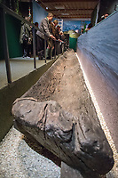 26 April 2018, Germany, Ettal: A 3,000-year-old dugout canoe, a type of raft, on display during a press tour at the Bayerische Landesausstellung 2018 (lit. Bavarian State Exhibition 2018). The state exhibition is set to open on 02 May. Photo: Lino Mirgeler/dpa