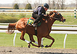 07 April 2011.  Hip #79 Kitalpha - Velvet Dawn filly, consigned by War Horse Place.