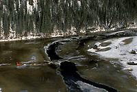 J.King crosses Innoko river bridge nr Cripple/'96 Iditrd Iditarod
