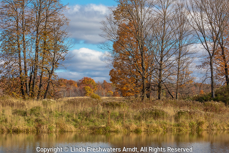An October farmfield in northern Wisconsin.